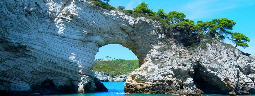 Digital Grafic Ibiza Blog